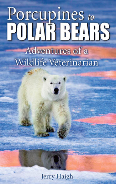 Porcupines to Polarbears