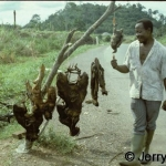 Bushmeat vendor