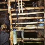 Machine milking at Kostroma moose farm