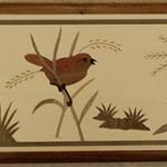 Narcissse 3 birds