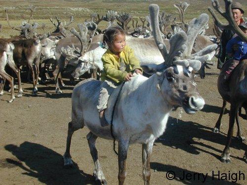 Girl on totem reindeer