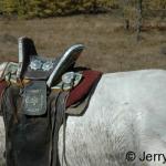 Traditional saddle