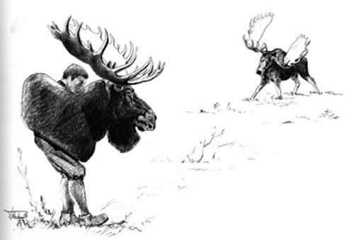 Tony Bubenik using a dummy with antlers of similar rank to a wild bull. The aggressive stance of the bull is typical. Story in book