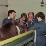 Minnie moose being examined with an endoscope at the Western College of Veterinary Medicine